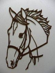 Pferdekopf.jpg